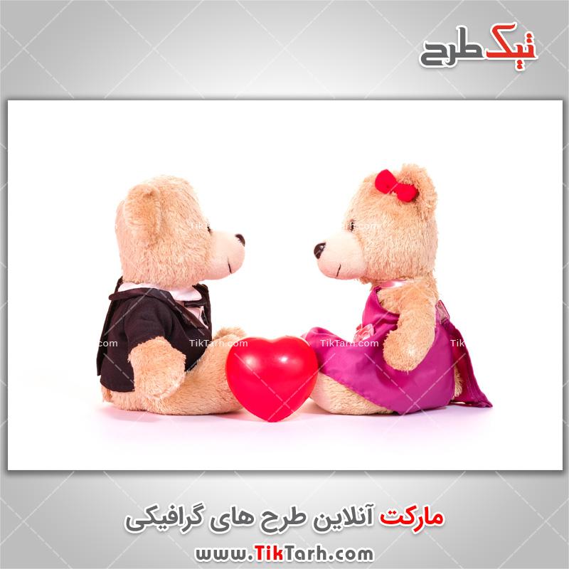 تصویر با کیفیت عروسک خرس های پشمالو