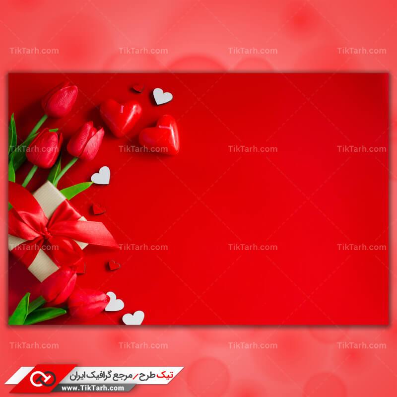 دانلود تصویر با کیفیت گلهای لاله و جعبه کادو
