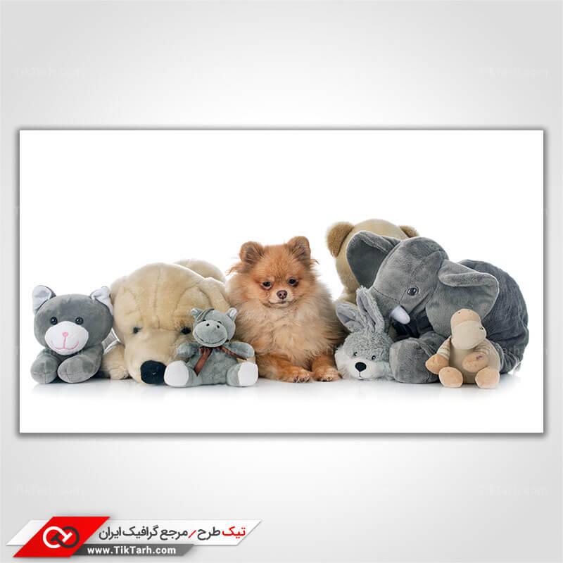 تصویر با کیفیت عروسک حیوانات