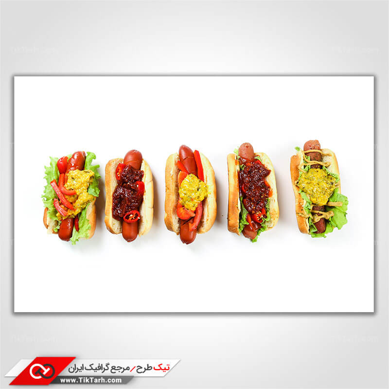 تصویر با کیفیت انواع ساندویچ هاتداگ