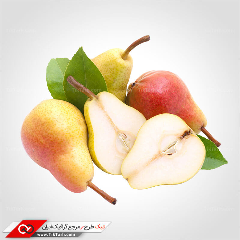 دانلود المان واقع گرایانه میوه گلابی
