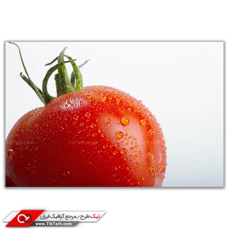 دانلود تصویر باکیفیت گوجه فرنگی