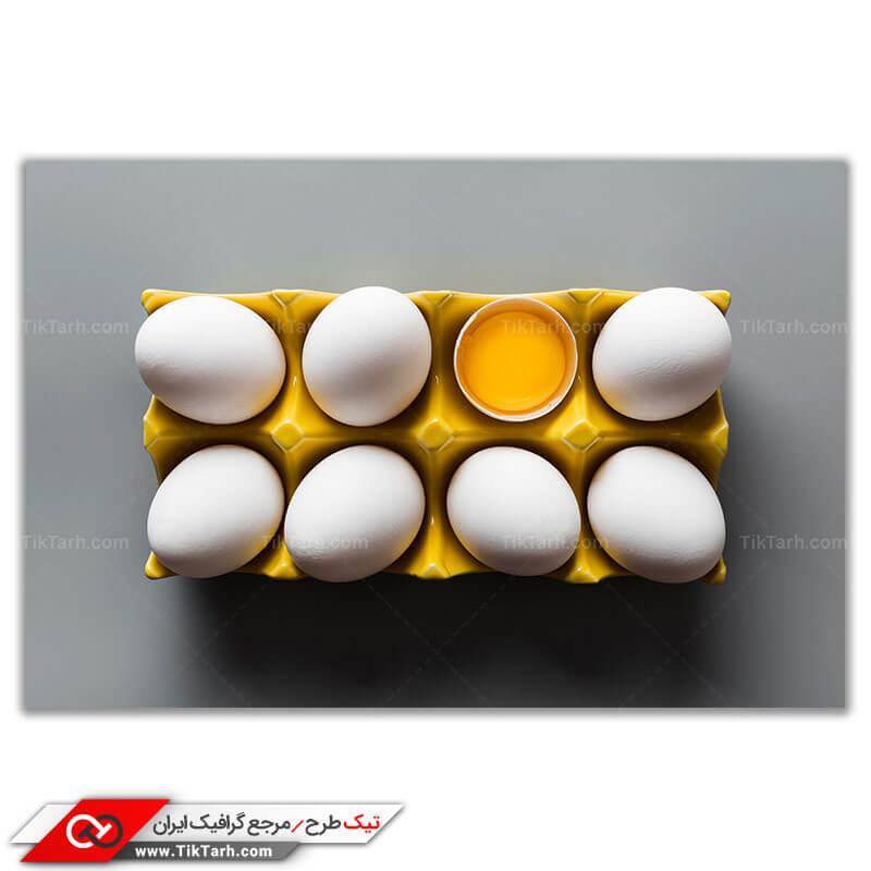 دانلود تصویر با کیفیت تخم مرغ با شانه