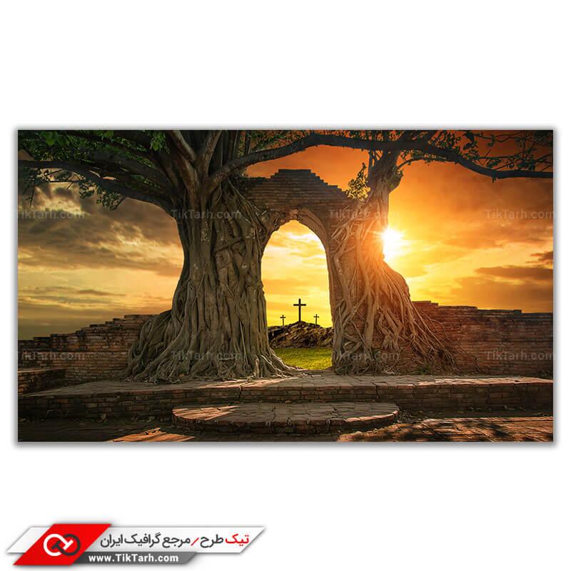 عکس باکیفیت از آرامگاه مسیحی پوشیده از درختان