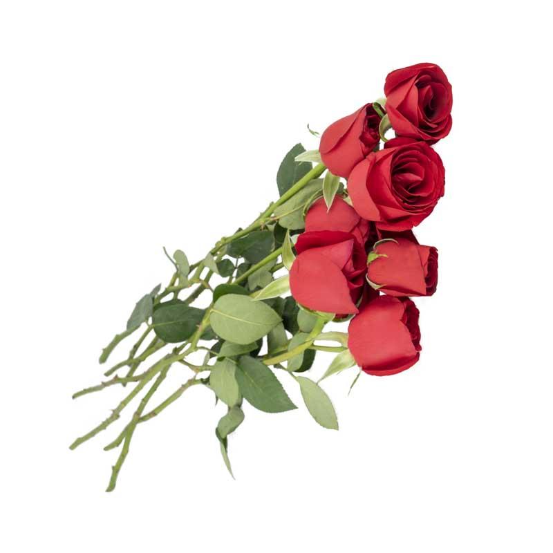 طرح گرافیکی دسته گل رز قرمز