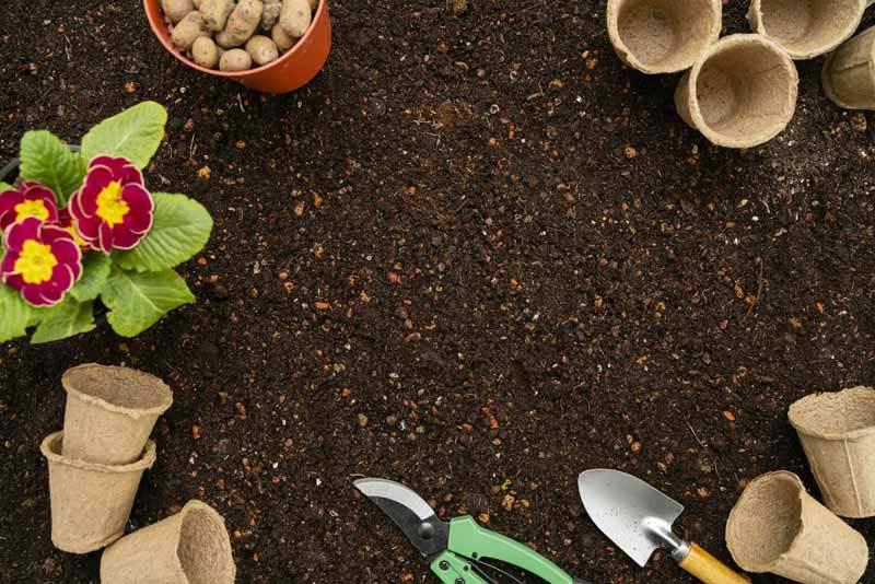 دانلود تصویر باکیفیت از گل و لوازم گل کاری