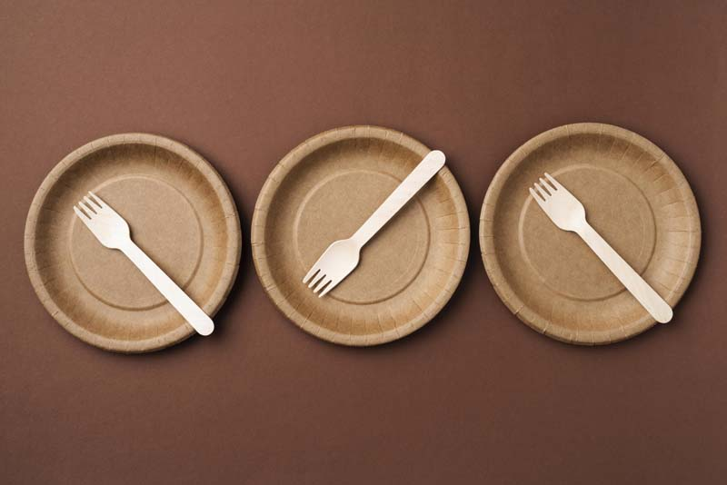 دانلود تصویر باکیفیت ظروف یکبار مصرف گیاهی
