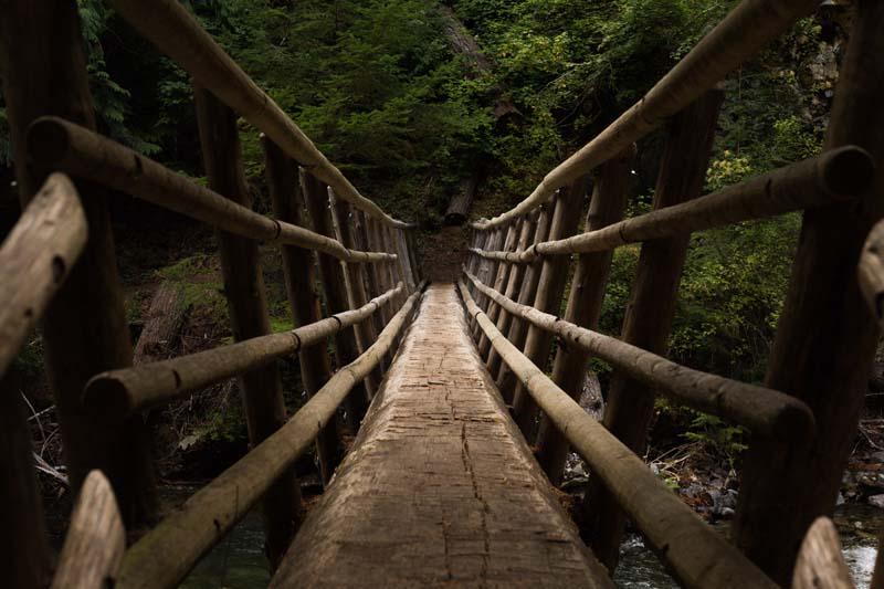 تصویر باکیفیت پل چوبی بر روی رودخانه