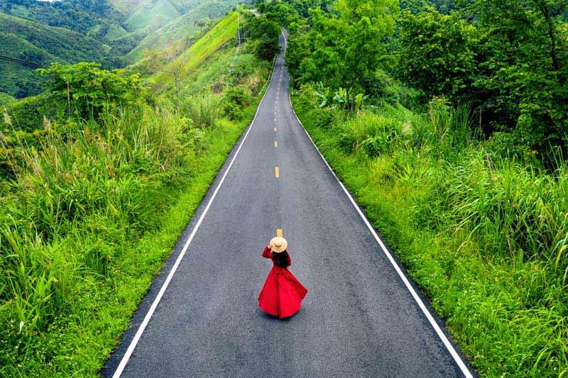 تصویر باکیفیت جاده از میان طبیعت زیبای سبز