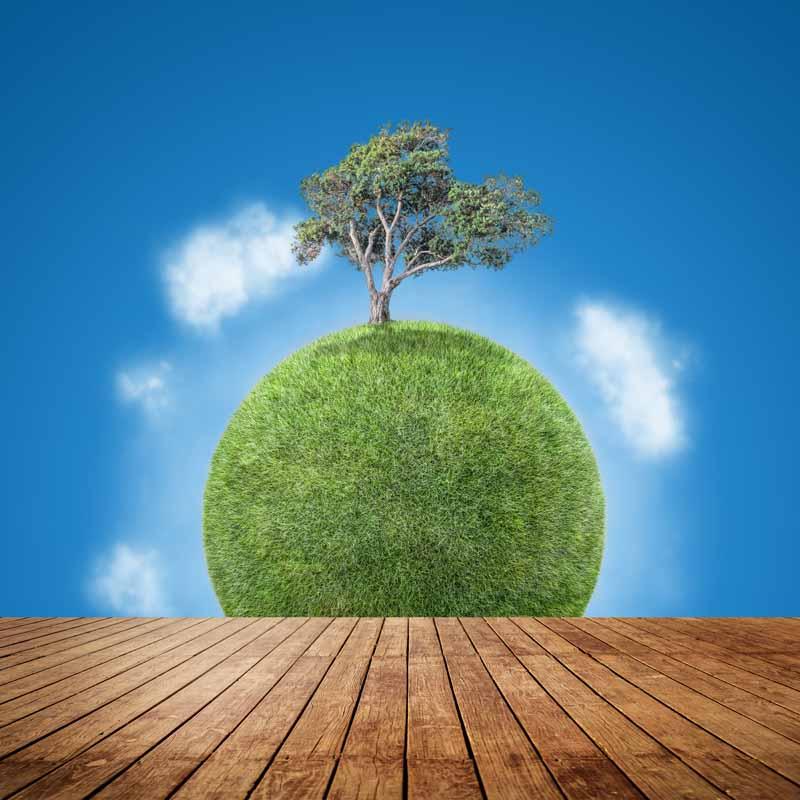 تصویر باکیفیت کره زمین سرسبز