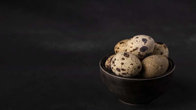 دانلود تصویر با کیفیت تخم های بلدرجین
