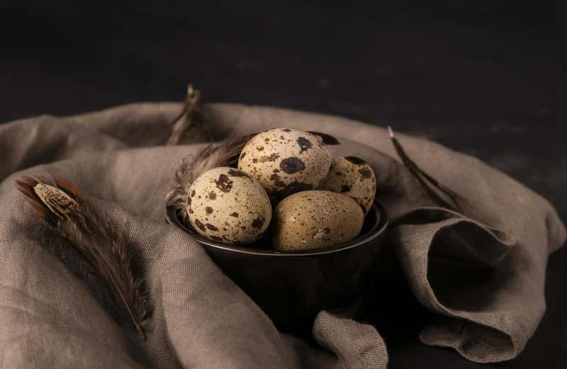 دانلود عکس با کیفیت تخم های بلدرجین