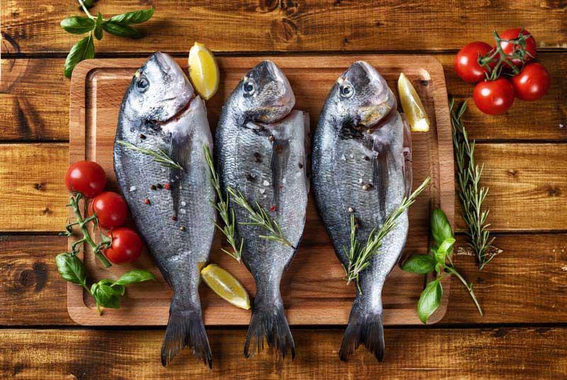 تصویر با کیفیت از ماهی ها تزئین شده