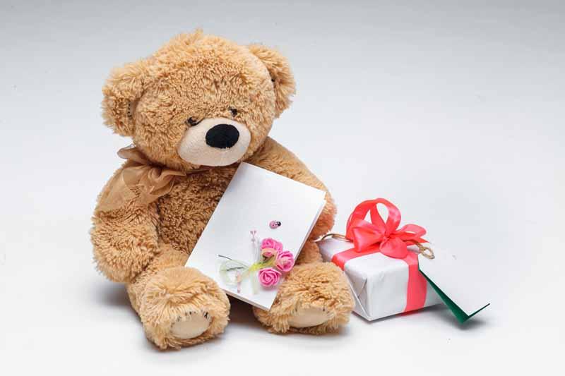 دانلود تصویر باکیفیت خرس عروسکی