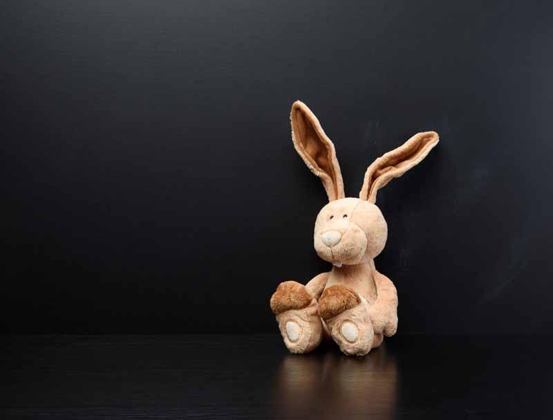 تصویر باکیفیت از خرگوش عروسکی