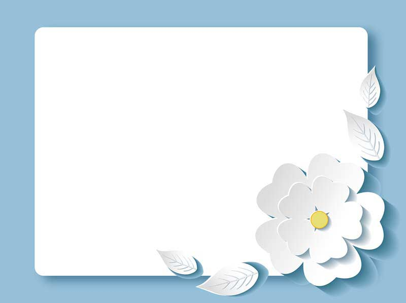طرح لایه باز پس زمینه گل کاغذی سفید