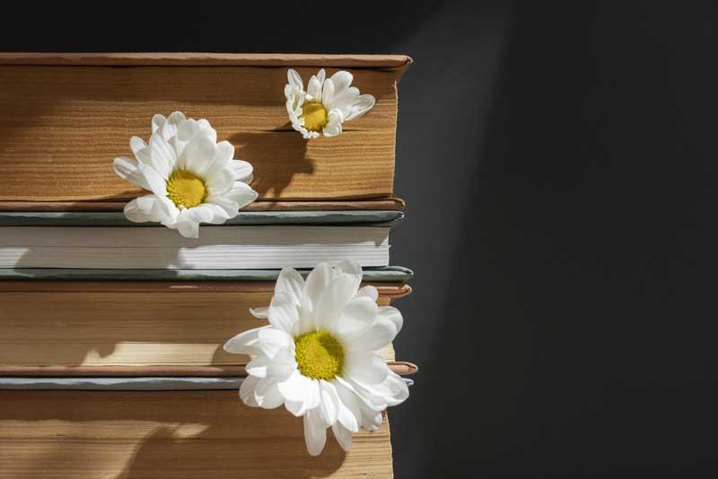 تصویر باکیفیت کتاب و گل