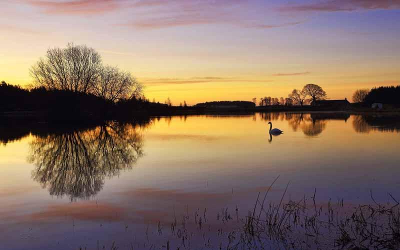 تصویر باکیفیت دریاچه قو
