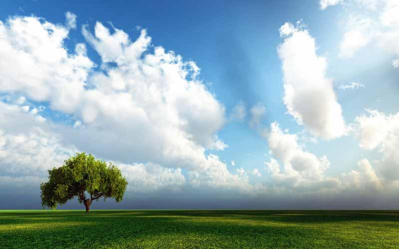 تصویر باکیفیت ابرهای پنبه ای روی دشت زیبا